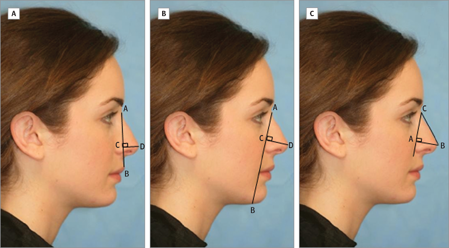 plastic and reconstructive surgery photo - 1